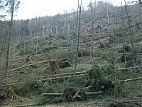 Foto auf Die Windkatastrophe!